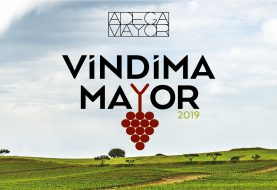 "Adega Mayor convida a viver a ""vindima Mayor 2019"""